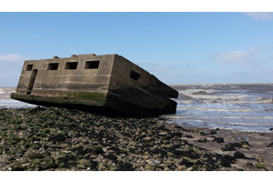 CITiZAN (Coastal and Intertidal Zone Archaeological Network)